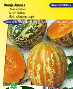 Muskmelon Oranje Ananas Seeds 4 Garden