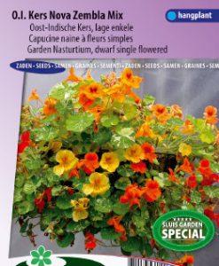 Nasturtium. Indian Cress dwarf single Nova Zembla mix Seeds 4 Garden