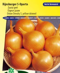 Onion Rijnsburger 5 Oporto (Density 5) Seeds 4 Garden