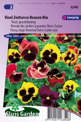 Pansy Swiss Giants Choice Mix Seeds 4 Garden