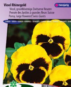 Pansy Swiss Giants Rhinegold Seeds 4 Garden