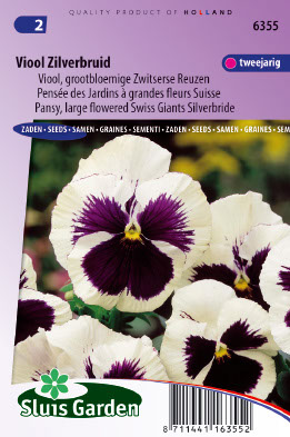 Pansy Swiss Giants Silverbride Seeds 4 Garden
