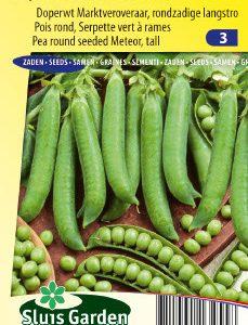Pea Round seeded Mechelse Krombek (140 cm) Seeds 4 Garden