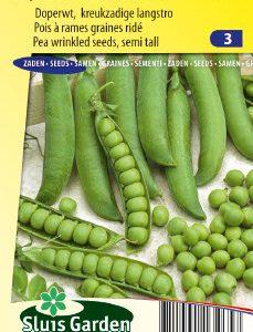 Pea Wrinkled seeded Kelvedon Wonder (60 cm) Seeds 4 Garden
