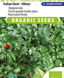 Plain leaved Parsley Italian Giant - Hilmar EKO Seeds 4 Garden