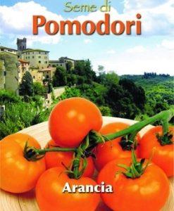 Pomodoro - Tomato Arancia - Zloty Ozarowski Seeds 4 Garden