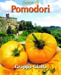 Pomodoro - Tomato Brandywine Yellow - Grappa gialla Seeds 4 Garden