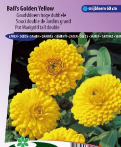 Pot Marigold Ball's Golden Yellow tall double Seeds 4 Garden