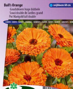 Pot Marigold Ball's Orange tall double Seeds 4 Garden