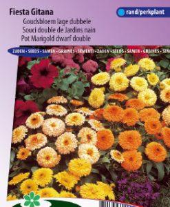 Pot Marigold Fiesta Gitana dwarf double mix Seeds 4 Garden