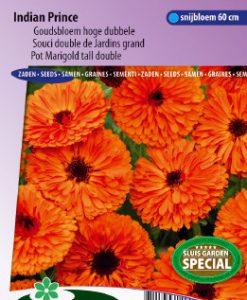 Pot Marigold Indian Prince tall double Seeds 4 Garden