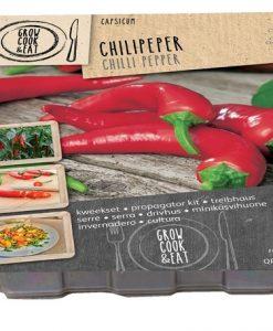 Propagator Chilli Pepper Seeds 4 Garden