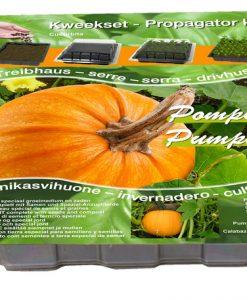 Propagator Pumpkin Seeds 4 Garden