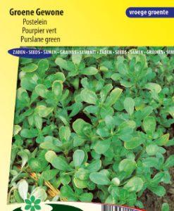Purslane Green Seeds 4 Garden