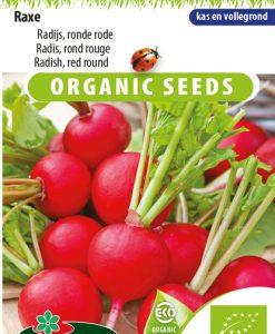 Radish Red Round Raxe EKO Seeds 4 Garden