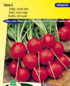 Radish Saxa 2 Seeds 4 Garden