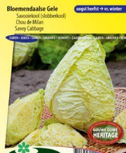 Savoy cabbage Bloemendaalse Gele Seeds 4 Garden