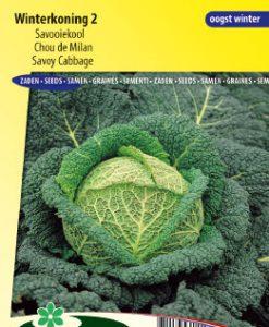 Savoy cabbage Winterking 2 Seeds 4 Garden