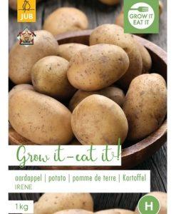 Seed-potato Irene 1 kg Seeds 4 Garden