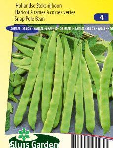 Snap Pole Bean Helda Seeds 4 Garden