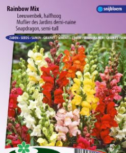 Snapdragon Rainbow mix (semi-tall) Seeds 4 Garden