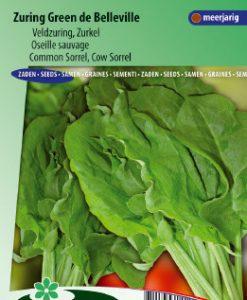 Sorrel Green de Belleville (Rumex acetosa) Seeds 4 Garden