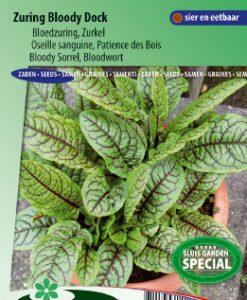 Sorrel or Bloodwort Bloody Dock (Rumex sang.) Seeds 4 Garden
