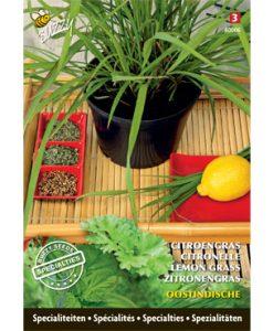 Specialties Lemongrass Seeds 4 Garden