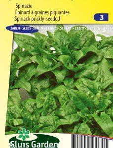 Spinach Breedblad Scherpzaad (Early spring and late autumn crop) Seeds 4 Garden