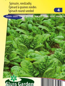 Spinach Nores (late spring and summer crop) Seeds 4 Garden