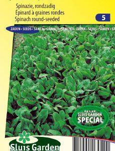Spinach Polydane F1 (Spring and autumn crop) Seeds 4 Garden