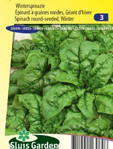 Spinach Winterreuzen (Autumn/winter crop) Seeds 4 Garden
