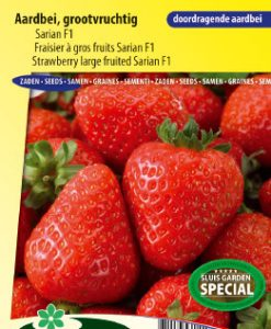 Strawberry Sarian F1 (large fruited) Seeds 4 Garden