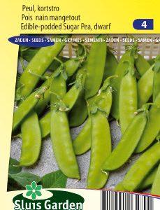 Sugar Pea Norli (50 cm) Seeds 4 Garden