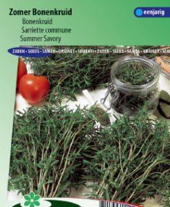 Summer Savory (Satureja hortensis) Seeds 4 Garden