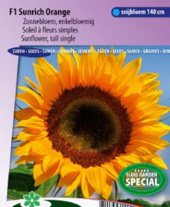 Sunflower F1 Tall Sunrich Orange Seeds 4 Garden