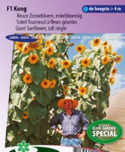 Sunflower Giant tall single F1 Kong yellow Seeds 4 Garden