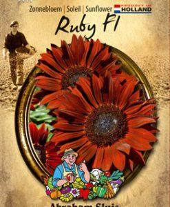 Sunflower annuus Ruby F1 Seeds 4 Garden