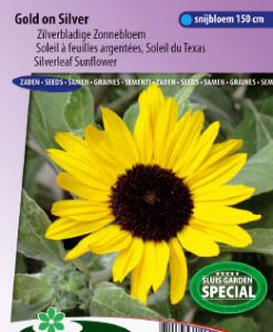 Sunflower silverleaved Gold on silver Seeds 4 Garden