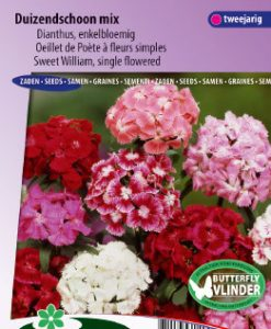 Sweet William Single Choice Mix Seeds 4 Garden