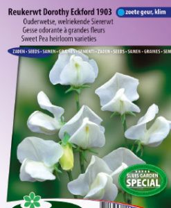 Sweet pea Dorothy Eckford 1903 (Heirloom variety) Seeds 4 Garden