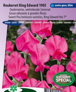 Sweet pea King Edward the 7th 1903 (Heirloom variety) Seeds 4 Garden