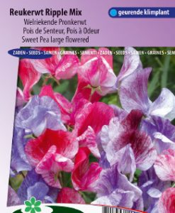 Sweet pea large flowered Ripple Mix Seeds 4 Garden