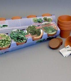 Terra Cotta Herbs Collection Seeds 4 Garden