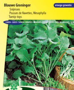 Turnip-tops Blauwe Groninger Seeds 4 Garden