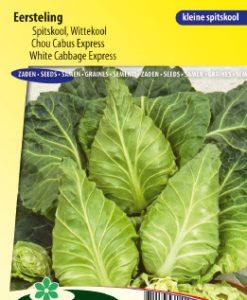 White Cabbage Express Seeds 4 Garden