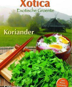 Xotica Koriander Seeds 4 Garden