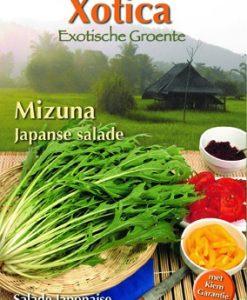 Xotica Mizuna Seeds 4 Garden
