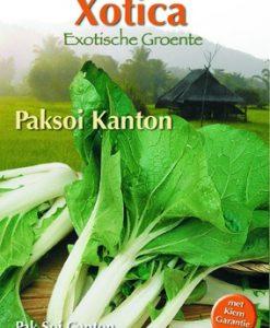 Xotica Paksoi Kanton Seeds 4 Garden