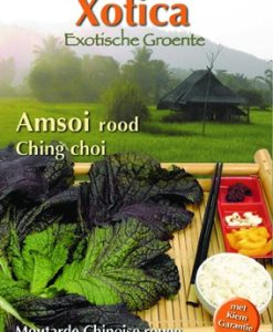 Xotica Red Amsoi (Brassica Juncea) Seeds 4 Garden